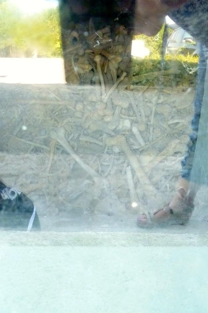 Amas de squelettes visibles à L'ossuaire de Douaumont. Des vitres on été aménagées à cet effet.